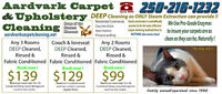 CARPET CLEANING, SPRING CLEANING? Go with #1, Steam Extraction