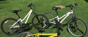 Two Junior Girls Mountain Bikes