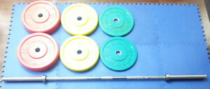 Rogue York B&R Olympic Bar Rubber Color Bumper Plate Weight Set