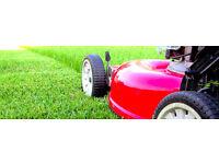 Lawn & Hedge Cutting