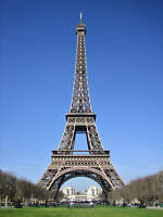 French Immersion tutor from France $20 /hr