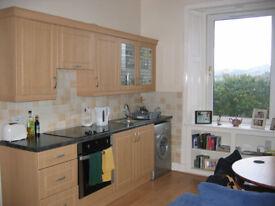 1 bedroom flat in newhaven