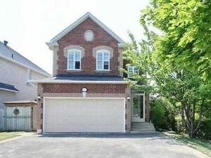 Wonderful Newly Renovated Family Home On A Quiet Area