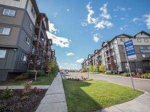 Great Incentives at Sunset Valley!! Edmonton Edmonton Area image 14