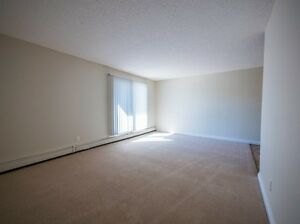 Great Incentives on 2 bedroom apartments Edmonton Edmonton Area image 13