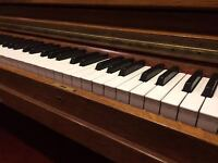 Piano, singing, beginner guitar and music theory
