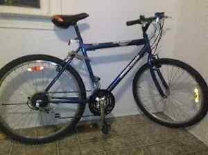 Supercycle sc1800.