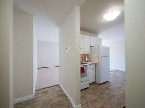 Great Incentives on 2 bedroom apartments Edmonton Edmonton Area image 5