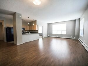 Great incentives &  2 Bedrooms start at $1245! Edmonton Edmonton Area image 7