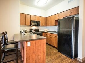 Modern suites and great incentives at Elizabeth Gardens! Edmonton Edmonton Area image 4