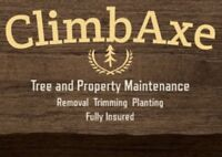 Property and tree maintenance INSURED