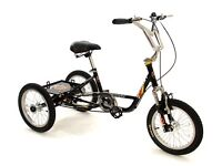 Mission Cycles Special Needs Trike - MX16