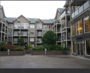Beautiful furnished condo Whyte Ave! $1695! 10121 80 Ave