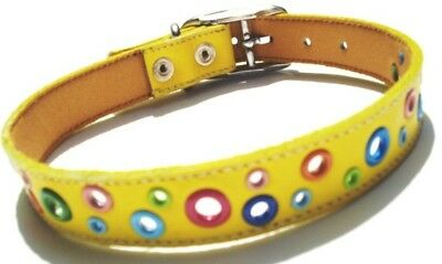 Cool Leather Dog Collar Loki Puppy Yellow Loki Puppy Leather
