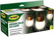 Indoor Hanging Lights