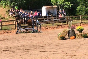 Horse  lease