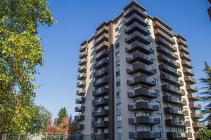 1 bedroom suites in Metrotown at Horizon Towers