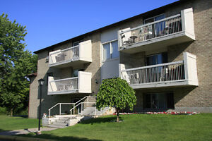 Lovely 1 Bedroom Apartment For Rent! Belleville Belleville Area image 1