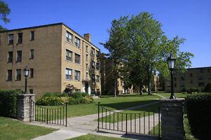 1 Bedroom Apartment for Rent in Etobicoke Kingsway Neighbourhood