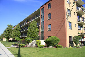 1 Bedroom Apt. for Rent in Toronto's Briar Hill-Belgravia Area!
