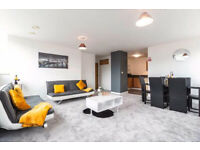 Two Bedroom Luxury Fully Furnished Apartment To Rent - £850pcm - Westside 1 - B1 - Available Now