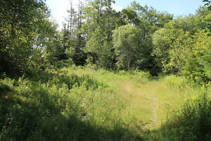 NEW PRICE -Beautiful building lot near Moose River Gold Mines