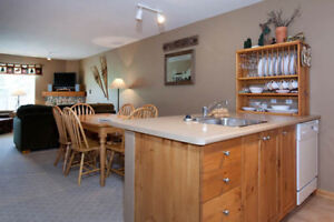 Silver Star 2 BR Condo Summer Rental (12 month option too)