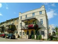Great 4 bed house in Brixton/Herne Hill overlooking Brockwell Park