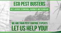 We can help you with any pest problems