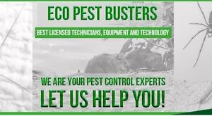 Eco pest buster GTA help you now