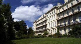 Beautiful - large 2 bed georgian apt - Sefton Park, princes