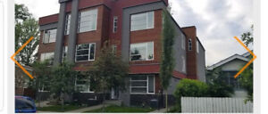 Executive living in Crescent Heights available immediately