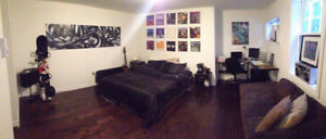 MASSIVE BEDROOM JULY-AUG SUBLET W/ EVERYTHING INCLUDED