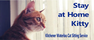NEED A RELIABLE CAT SITTER?