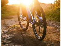 Mountain bikes Belfast