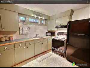 South Lakeview - Partially Furnished 1 Bedroom Suite Regina Regina Area image 1