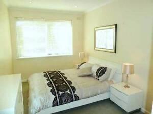 Furnished One Bedroom (unshared) in St Kilda - $280/month St Kilda Port Phillip Preview