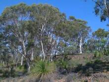 Do You Want To Live On Your Own 5 Acres Of Natural Bushland? Busselton Busselton Area Preview