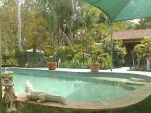 BRICK HOME - POOL - 2 ACRES! POTENTIAL PLUS! SOUND INVESTMENT!! Upper Caboolture Caboolture Area Preview