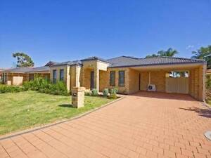 4 Bedroom solar powered family home. Lovely quite area for rent. Seville Grove Armadale Area Preview