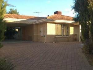 LOW RENT, FREE WIFI. AIR CON. WALK TO CURTIN UNI!!!! Bentley Canning Area Preview