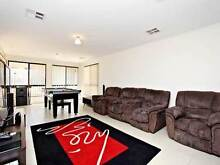 House Share McLaren Flat McLaren Flat Morphett Vale Area Preview