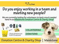 The Dogs Trust needs you to volunteer.