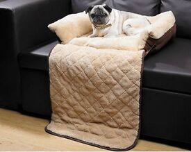 Pet Couch Bed