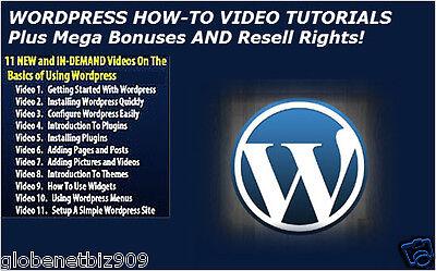 Wordpress How To Video Tutorials Plus 500 Wordpressthemes And Bonuses   Cd