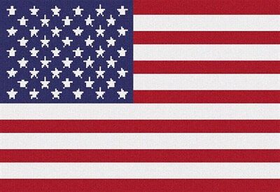 Stars And Stripes Needlepoint Kit or Canvas (Flag) ()