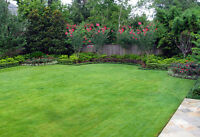 General Yard Work & Lawn Care - South Shore of Montreal