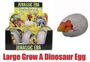Dino Magic
