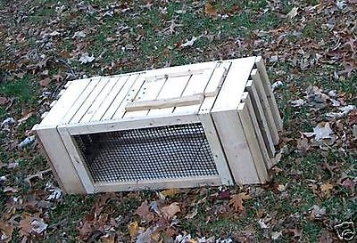 QUAIL. Cage.Pigeon.Dog.Training.Transfer of live.Birds.MADE IN U.S.A. BY VET'S