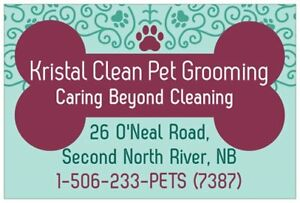 DOG & CAT GROOMING